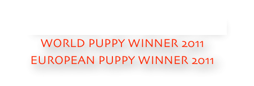 SHIRANUI GO Fuen No Oka